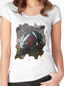 Penguin Shirt Women's Fitted Scoop T-Shirt