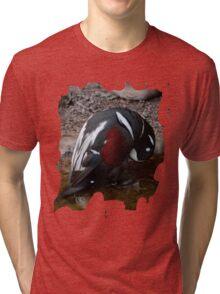 Penguin Shirt Tri-blend T-Shirt