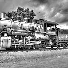 Union Pacific No. 4455 B&W by lkrobbins