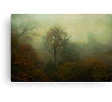 Walking into Fall Canvas Print