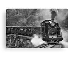 Puffing Billy, Dandenong Ranges, Victoria Canvas Print