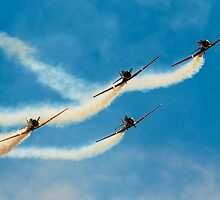 Southern Knights flying T-6 Havards by Chris  Randall
