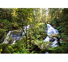 Triplet Falls, Great Otway National Park Photographic Print