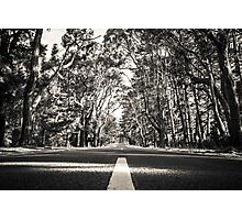 Road to nowhere (Coolart Road, Moorooduc, Victoria) Photographic Print