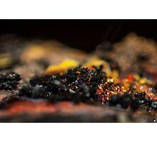 Ash Photographic Print