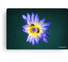 Bees and Water Lilly Award Winning Photo Canvas Print