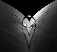 Open Love by Kevork Afarian Photography