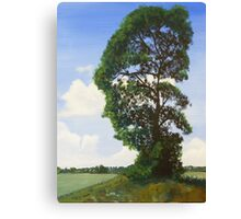 Landscape with Tree Canvas Print