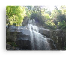 """Water Fall"" by Carter L. Shepard Canvas Print"