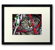 Thats It! Framed Print