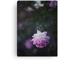 Lone Beauty - Purple Flower Photograph Canvas Print