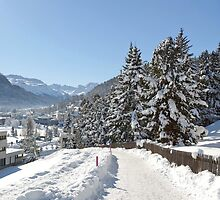 Winter in Switzerland by Vac1