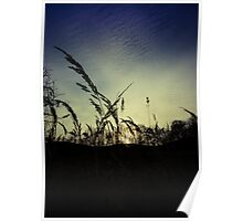 Shadows in the sunset Poster
