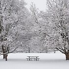 Picnic in the Snow  by Mike Koenig