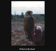 A bird in the hand (Crossbill) by Merlin13