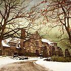 Hilltop Estate by Jessica Jenney
