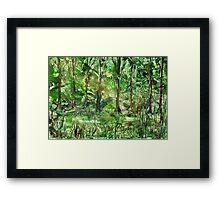 Emerald Glade Framed Print