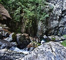Maximiano river by Luiz  Filipe