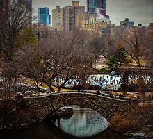 January In The Park by Chris Lord