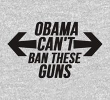 Obama Can't Ban These Guns by mralan
