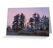 dog park at dusk Greeting Card