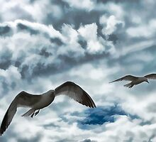 Freedom of Flight by Myron Watamaniuk