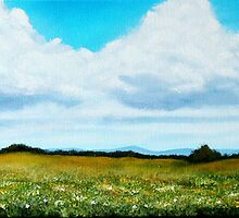 Summer Wild Flower Meadow Panoramic by CreativeImage