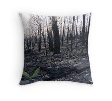 After the fire 2 Throw Pillow
