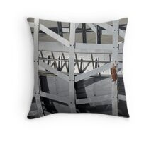 Caught in the frame Throw Pillow