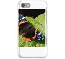 Butterfly 10  iPhone Case/Skin