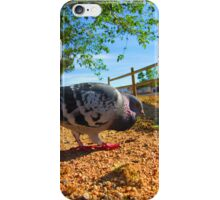 Feathered Friend The Pigeon iPhone Case/Skin