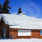 Snow Roof by Charles Kosina