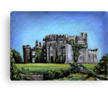 Birr Castle Demesne Canvas Print