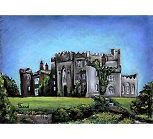 Birr Castle Demesne Photographic Print