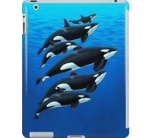 San Antonio Orcas iPad Case/Skin