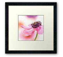 Smooth too... Framed Print