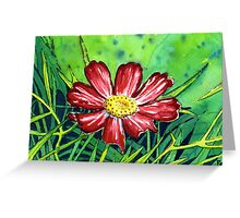Little Red Cosmo Greeting Card