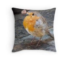 Robin Red Breast Throw Pillow