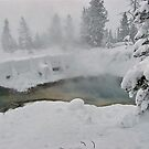 Yellowstone thermals by Nancy Richard