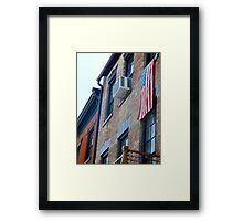 The Patriot.  Framed Print
