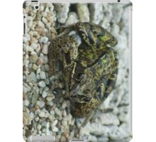Dry Frog iPad Cover iPad Case/Skin
