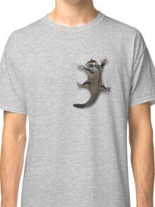 Sugar Glider Clinger Classic T-Shirt