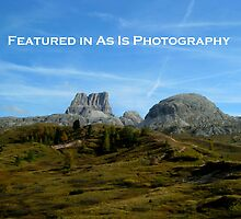 Feature Banner - As Is Photography by su2anne