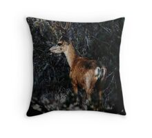 Deer at the Archery Range Throw Pillow
