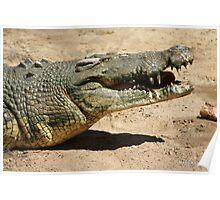 Big Saltwater Crocodile 2 Poster