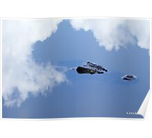 Crocodile Reflections in mirror water Poster