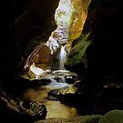 Rocky Creek Canyon. by Andy Newman
