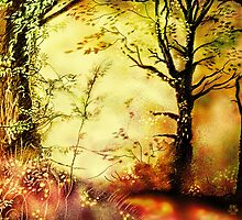 Woodland scene [Coloured lights version] by Grant Wilson