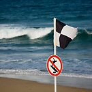 No Surfing - Beachcomber Series by reflector