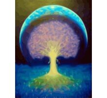 The Tree Of Life Photographic Print